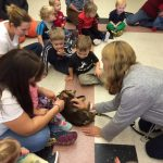 pet-therapy-skaneateles-dachshund-gemma-group