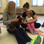 pet-therapy-skaneateles-dachshund-gemma-meets-little-girl