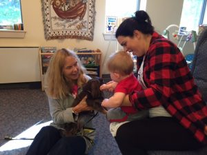 pet-therapy-skaneateles-dachshund-receives-small-pets