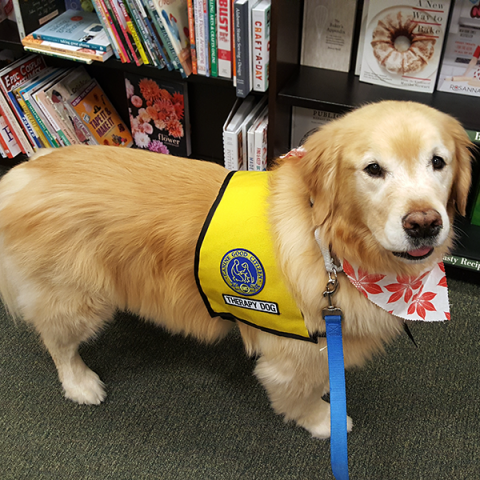 Barnes and Noble Bookfair - Scrappy