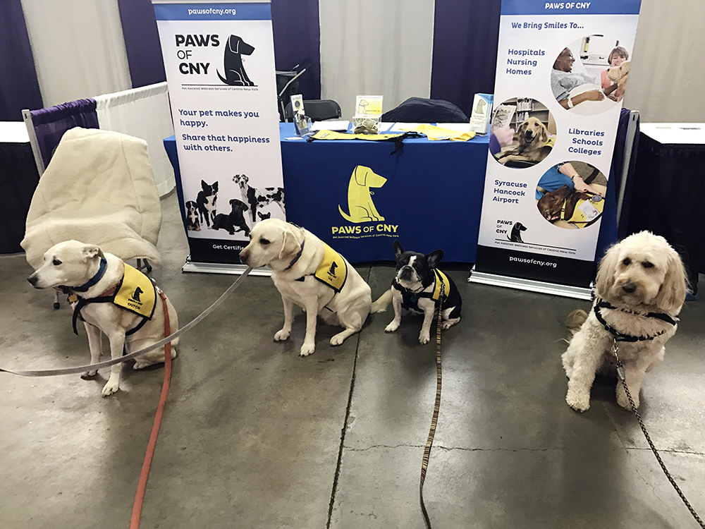 Team_at_ExpoPet-Therapy-Syracuse-Kids_Team 2