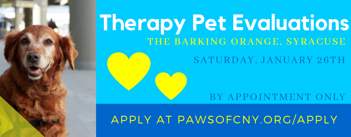 Therapy Pet Evaluations, Syracuse, January 26