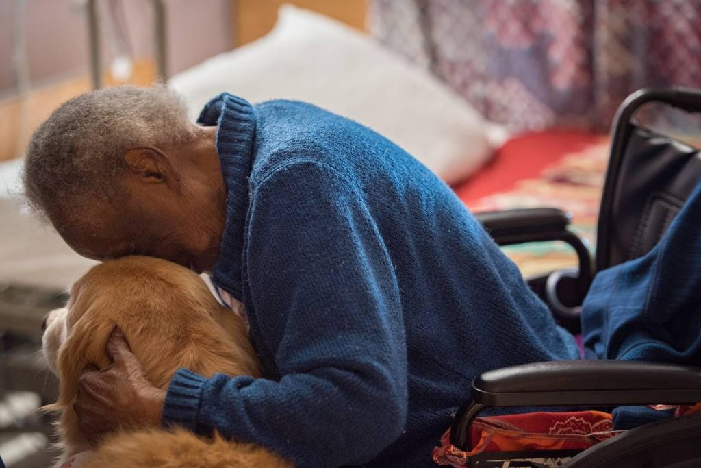 Nursing Home Pet Therapy Syracuse