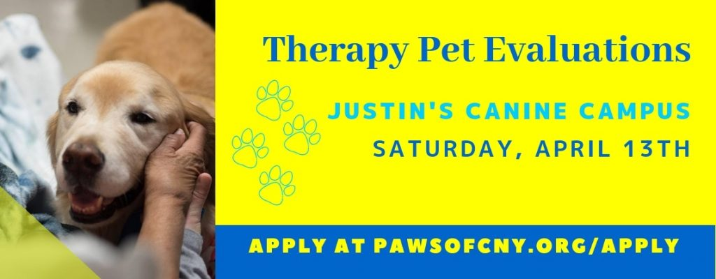 Syracuse Pet Therapy Evaluations