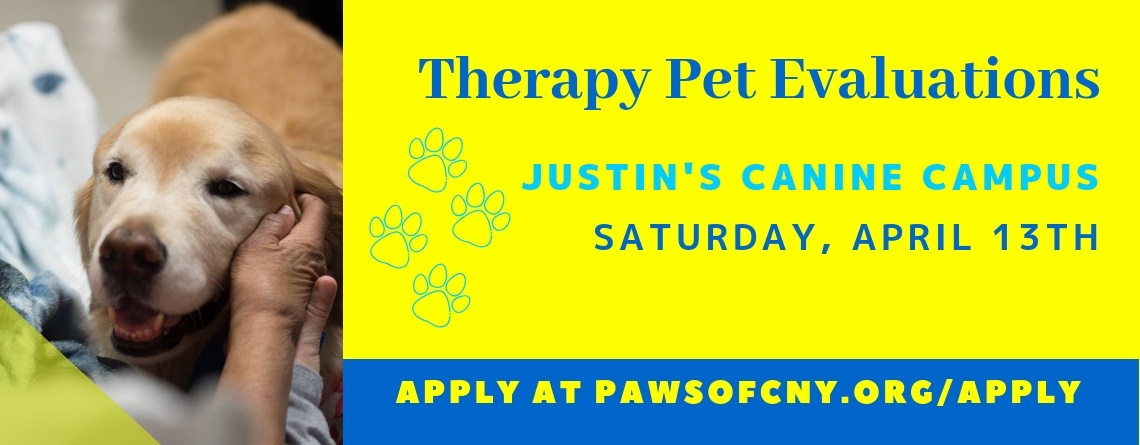 Syracuse Therapy Pet Evaluations