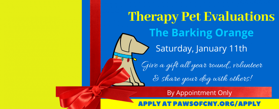Syracuse Therapy Pet Evaluations by Appointment