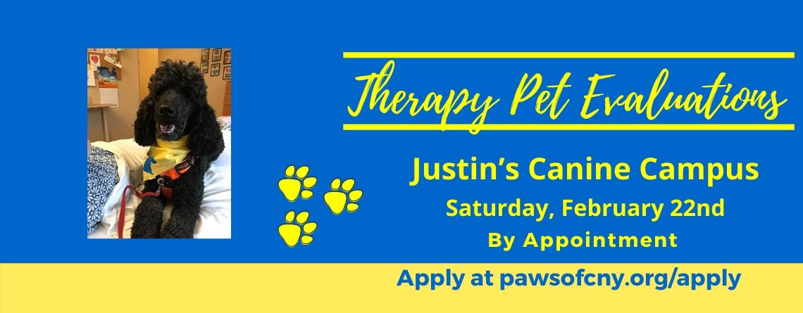 Syracuse Pet Therapy Evaluations by Appointment