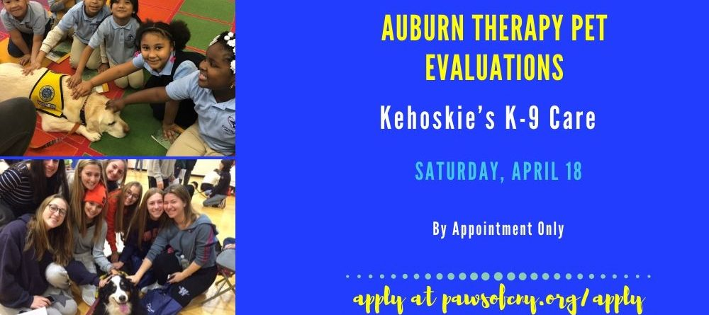 Auburn Therapy Pet Evaluations Saturday, April 18th